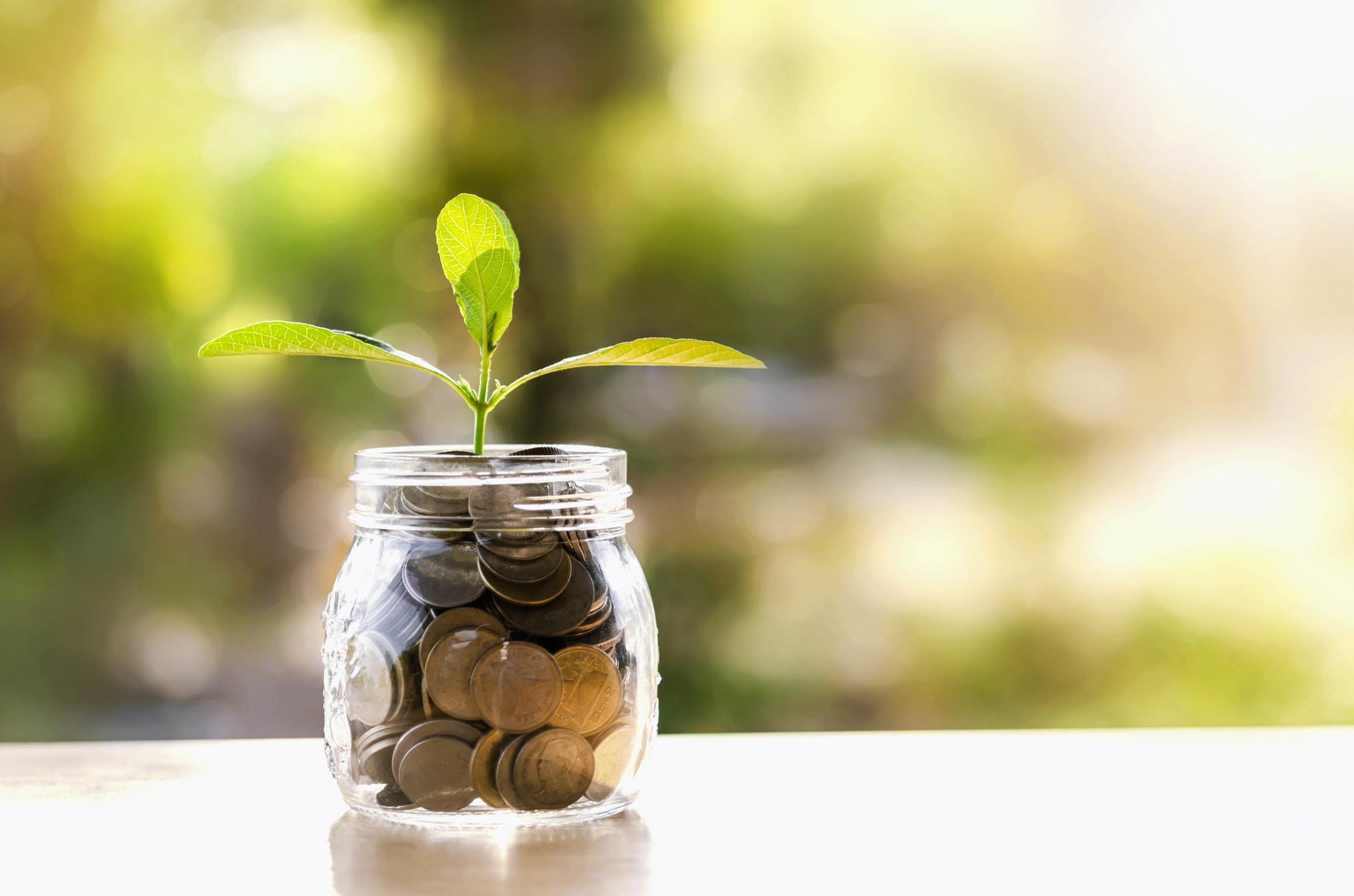 La transformation numérique (ou digitale) de la profession comptable implique le développement de nouvelles missions rentables.